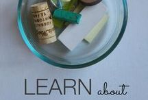 Homeschooling Lessons and Ideas / Homeschool Lessons and Ideas