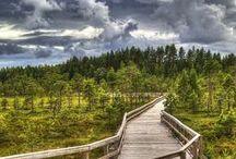 Best Of Finland