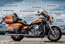 Blog Posts / A Board of San Diego Harley-Davidson's Blog Posts / by San Diego Harley-Davidson
