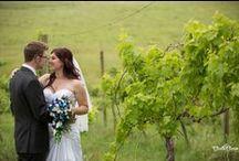 Winery Wedding / Winery weddings