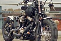 2014 Harleys / The 2014 Harley-Davidsons / by San Diego Harley-Davidson