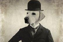 Vintage anthropomorphisme / Quand les animaux sont des hommes ...
