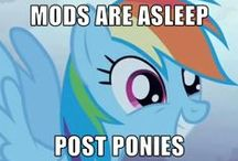 Brony / 4 a lecture I'm doing