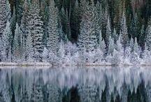 J'aime l'hiver ... Winter time