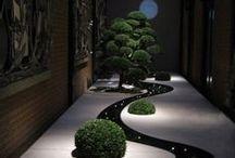 Garden / Kertek