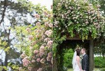 Garden Wedding / Wedding theme inspiration, wedding details, wedding decorations, garden wedding, real wedding