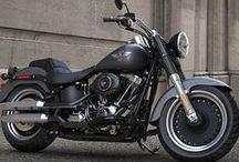 2015 Harley's / by San Diego Harley-Davidson