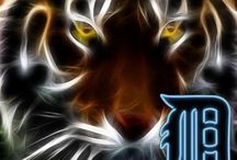 DETROIT TIGERS... LOVE ME SOME BASEBALL / LOVE MY TIGERS / by FranCHIZE