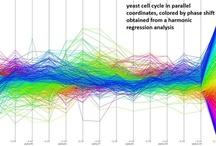 Science / Comic Sans, rainbow scales, gradients. Science has it all. / by Benjamin Wiederkehr