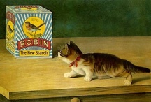1/The cat in advertising / Miscellany / by Marimonte
