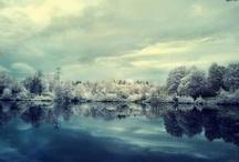 .Four seasons.