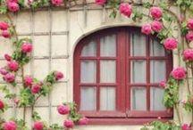 Windows & Balconies  ღೋƸ̵̡Ӝ̵̨̄Ʒღೋ