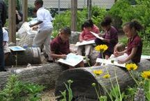 Environmental Ed & STEM at Camp! / Ideas for outdoor education programs and ways to integrate #STEM into your #camp activities