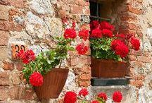 Sonho conhecer... / Toscana Itália, lugar lindo demais.