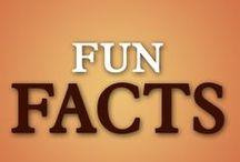 Saints Fun Facts / Free downloadable pdf's of your favorite Saints!