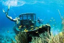 Curacao Underwater World