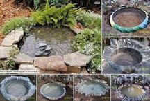 Garden and Backyard Idea's / by Haylee Ruiz