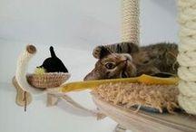 Kočičí bydlení / Kočičí stromy, prolézačky, pelíšky ...