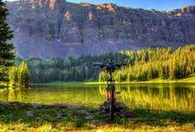 US Trip (Montana)
