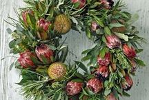 Protea Wreaths / A wreath is an arrangement of flowers, leaves or twigs in a circular pattern. The circle often implies eternity or eternal life, since the shape has no beginning or end. It's also a symbol of strength, a joyful spirit and 'Welcome'.