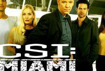 CSI Miami (Horatio Caine)