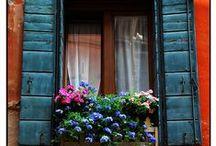 Windows & Doors  / by Lucille Kerner