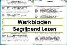 MB/BB: begrijpend lezen