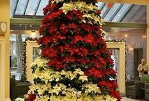 Christmas Trees / by Lucille Kerner