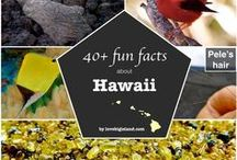 """Hawaii Trivia, list of """"did you know?"""" cool facts"""