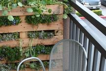 Nápady do záhrady/Gardening tips