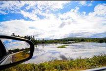Road Trip!! / Moodbord
