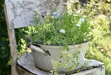 ~Ideas Garden~