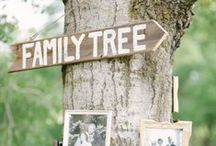 Family Reunion Ideas / Tons of ideas for Family Reunions, large and small!  Fun, Easy, Affordable, Inexpensive, and Creative Ideas for Family Reunions!