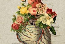 flowers everywhere / by Debbie Patty