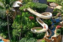 Wild Water Slides / Climb nerve-wracking steps for a chance to slide down these thrilling water slides from all over the world!