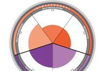 De grafieken van TSI / In onze rapporten zijn verschillende grafieken te vinden. Over al deze grafieken vind u hier een korte uitleg.