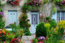 PARISIEN GARDENS / Gardens in Paris