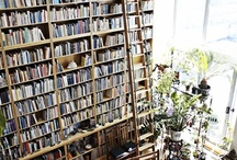 Books, Movies, Art and Amazing! / by Cynthia McElwee