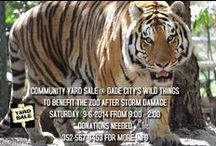 Specials for zoo / Specials for Dade Citys Wild Things Zoo