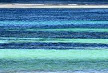 The sea / The sea