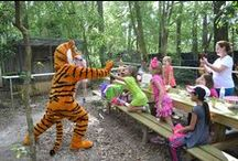 Zoo-Riffic Birthday Party Ideas / Zoo-Riffic BIrthday party's available at Dade City's Wild Things
