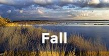 Fall in Greece / What to do during Fall in Greece.