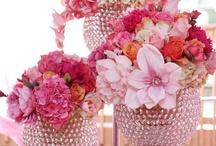 wedding  / by Saira Sayeed