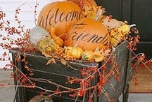 Fall Decorating / by Carrie Winders