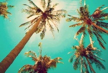 """Summer loving♥ / """"And we roll in every summer like it's shameful to be underneath the ceiling.."""""""