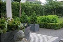 Garden/Outdoor / by Sandra Katze