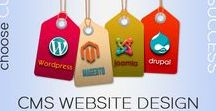 CMS Development Services / Organization and management of content can be a very challenging task but Web Crayons has had immense experience in this field. We use the latest technologies such as Joomla, Wordpress, Drupal as well as Magento to help you manage your content effectively as well as efficiently.