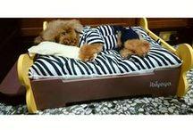 Pet bed | IBIYAYA pet bed