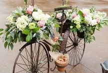 Bicycles & Flowers / by Penny Trotter