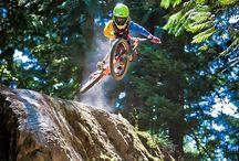 Bikes / Mountain